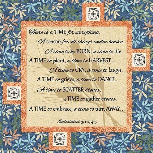 WP-WP188 A Year of Faith