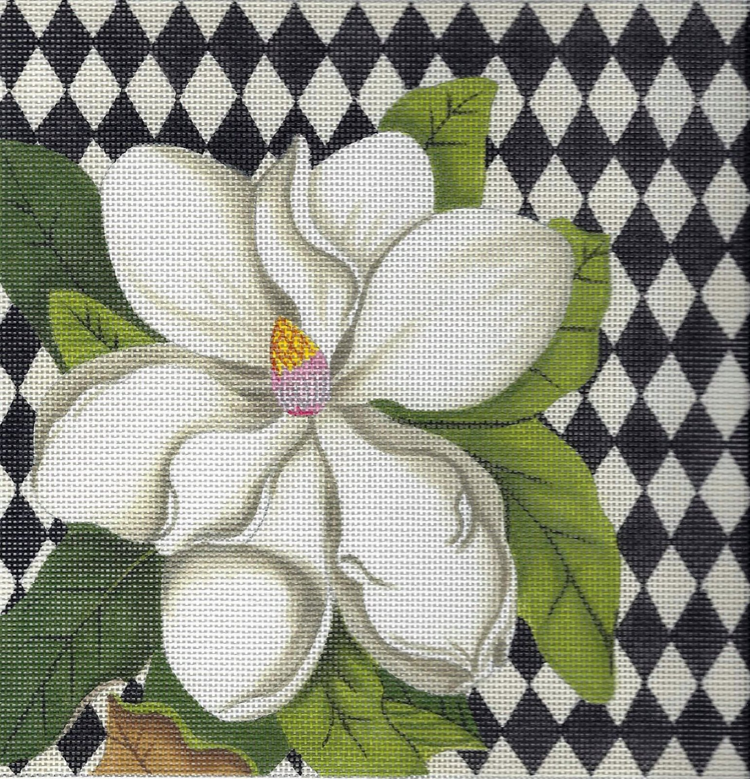 Harlequin Magnolia