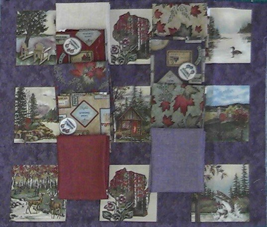 2017 Shop Hop 9pc fat Quarter Bundle + Panel