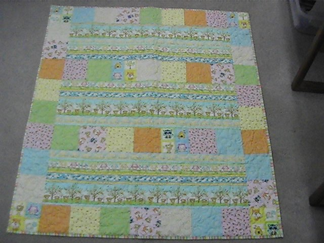 Woodland Cuties Quilt Kit  50 x 55 1/2