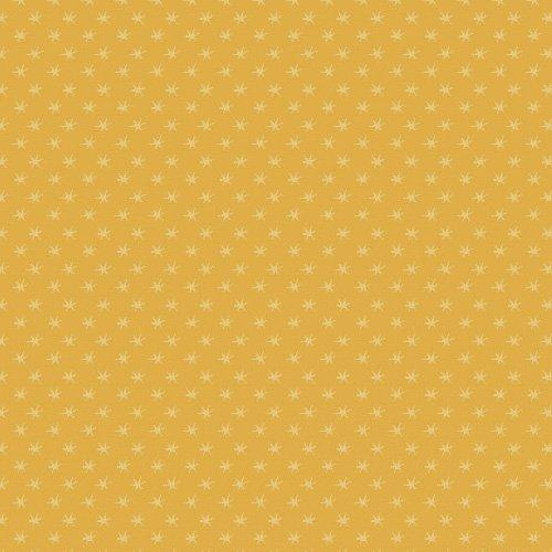 Cheddar Stars