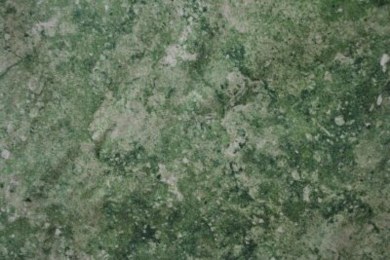 Stonehenge Clover field