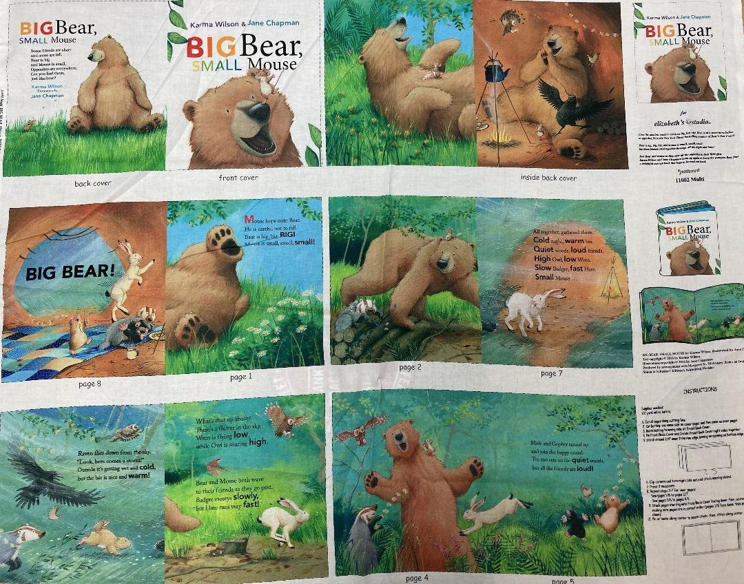 Big Bear Small Mouse Fabric Book