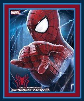 Spiderman II panel