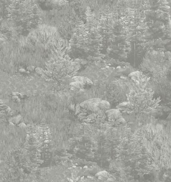 QT - Deer Mountain - Tree Landscape Gray 24793-K
