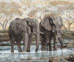 Northcott - New Dawn Elephant Panel