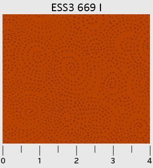 P&B - Bear Essentials 3 Swirl Dots ESS3-669-I