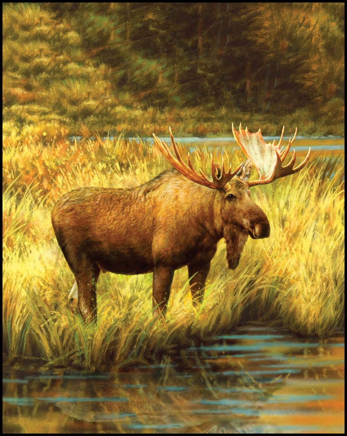 Moose - DIGITAL PANEL