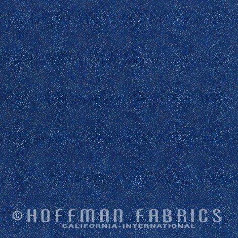 Hoffman - G8555-230S Sapphire-Silver