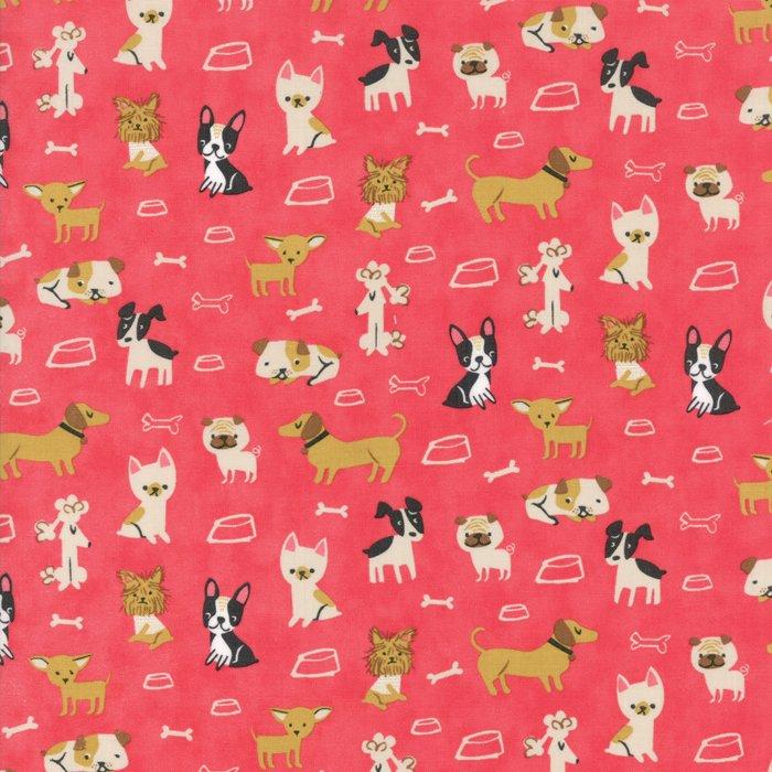 Woof Woof Meow 20562-19