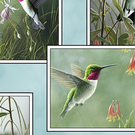 Hummingbirds 1649-25933-Q