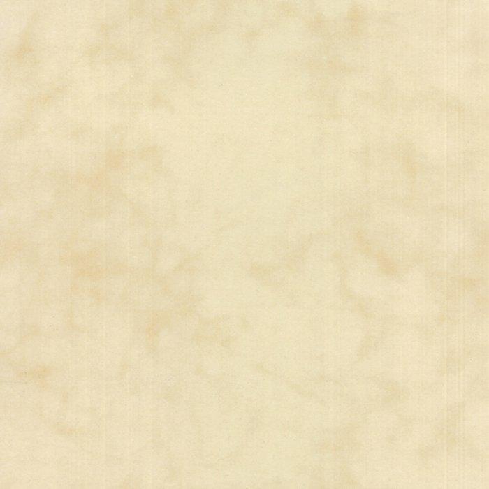 Primitive Muslin Flannel F1040-22