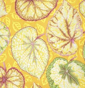 Big Leaf - Yellow