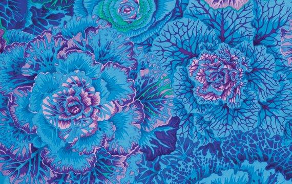 Brassica - Blue