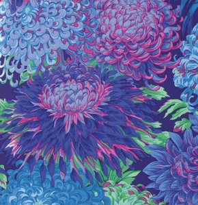 Japanese Chrysanthemum - Blue
