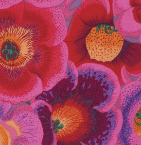 Gloxinias - Pink