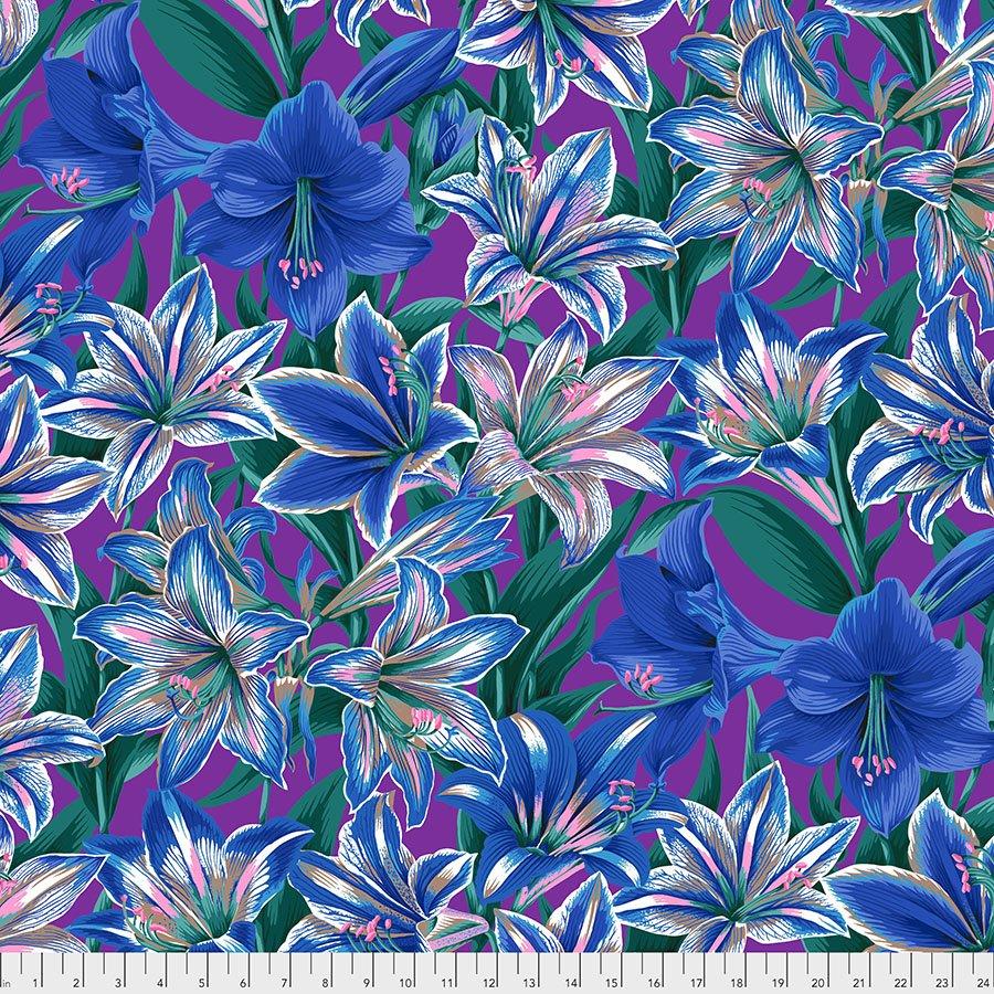 Amarylis - Blue