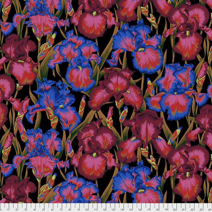 Bearded Iris - Dark
