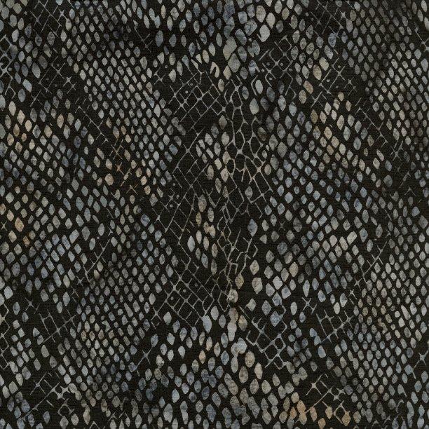 Wild Things - Snake Skin - Licorice