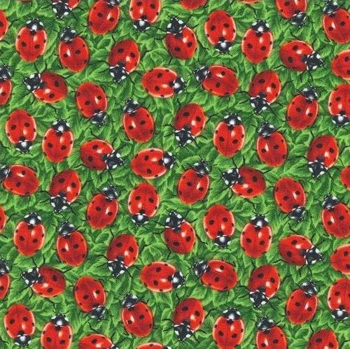 You Bug Me - Ladybugs