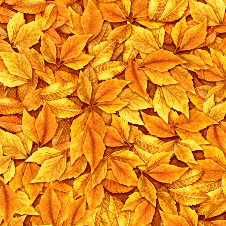 Always Face the Sunshine - Leaves - Burnt Orange