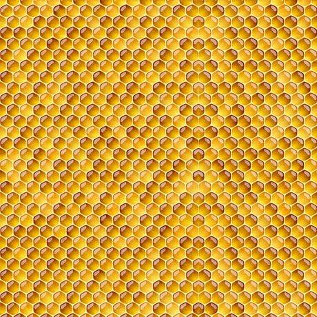 Always Face the Sunshine - Honeycomb - Honey