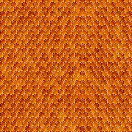 Always Face the Sunshine - Honeycomb - Terracotta