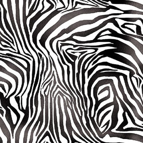 A Jungle Story - Zebra Skin