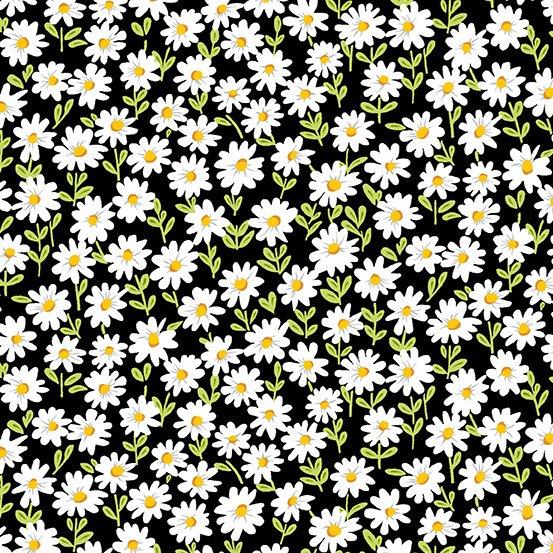Sunny Bee - Daisies - Black