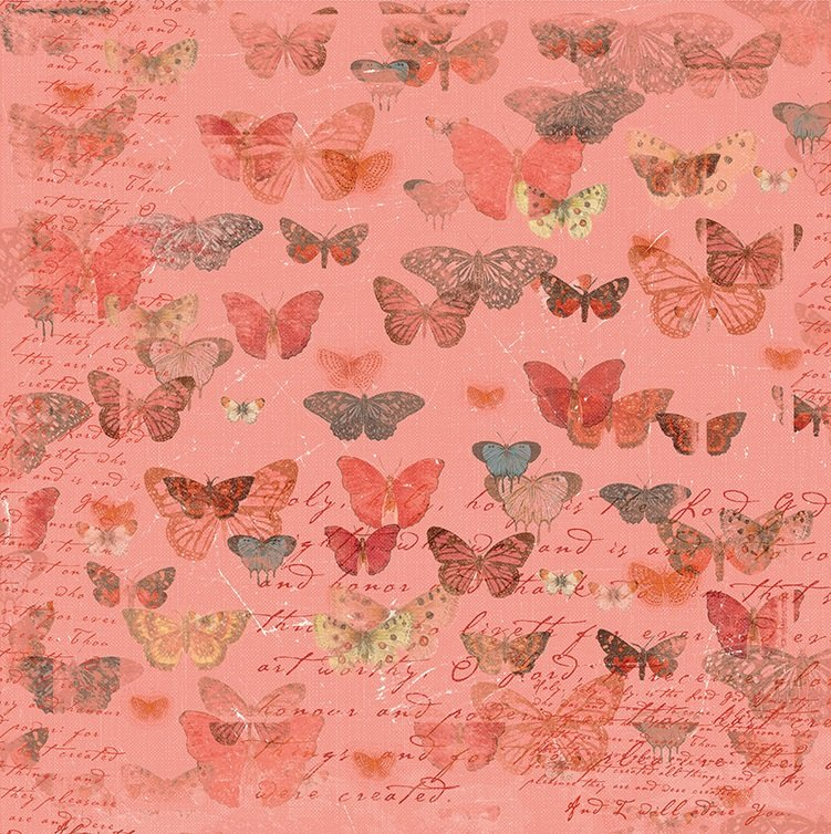 Devotion - Butterflies - Coral