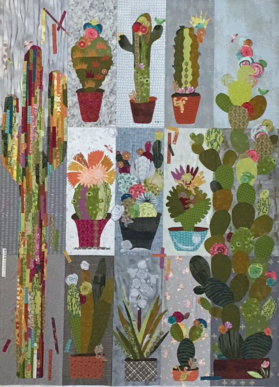 Collage Cactus Sampler