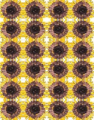 Summer Sunshine - Sunflower Grid - Light Gold