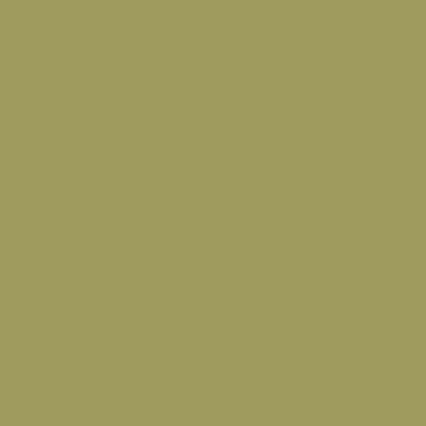 Confetti Cotton Olive