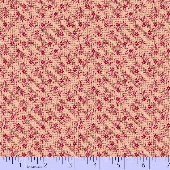 Marcus Fabrics: Paula Barnes Companions, R22-0250-0126