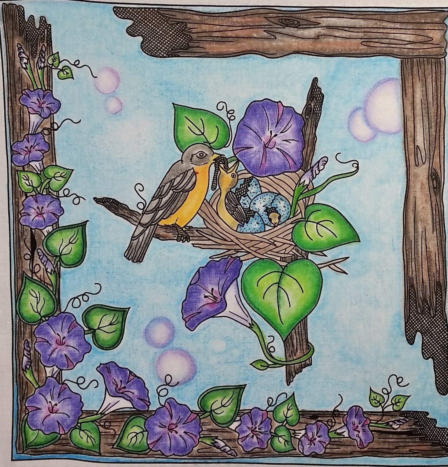 DIGITAL DOWNLOAD  Let's Color! Birdhouse Collection Workbook