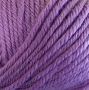 Ella Rae Cozy Soft Chunky 204 Blueberry Purple