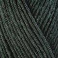 Berroco Ultra Wool 33158 Rosemary