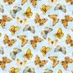 Blue Butterflies All Over