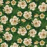 Green Magnolias