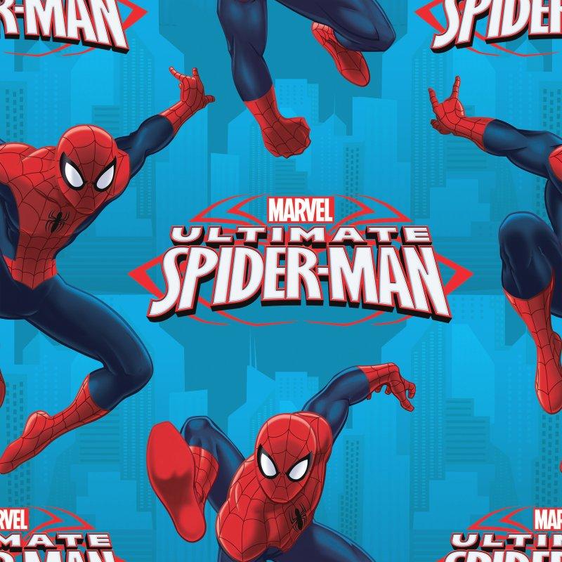Ultimate Spider-Man Ultimate Hero