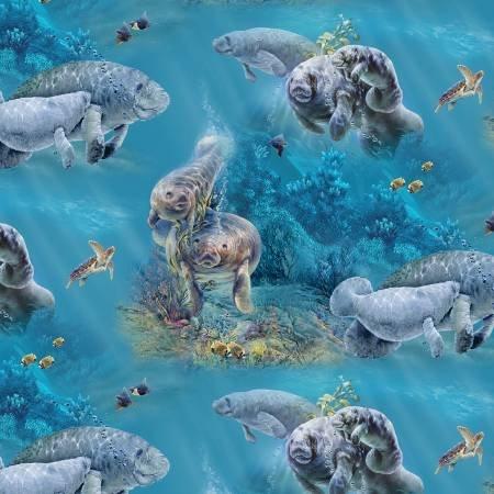 Aqua Manatees