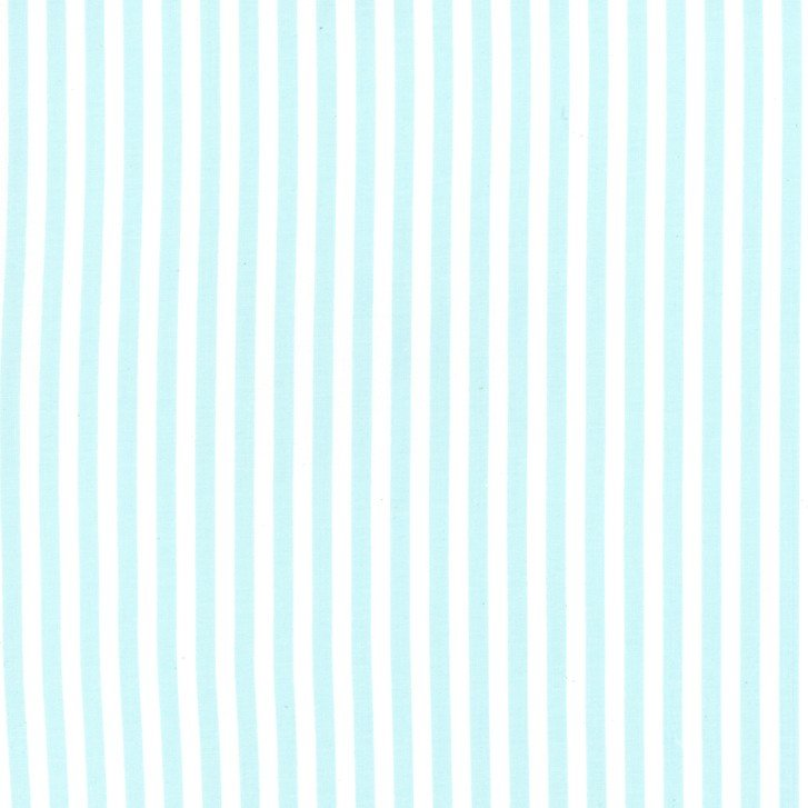 Clown Stripe in Aqua