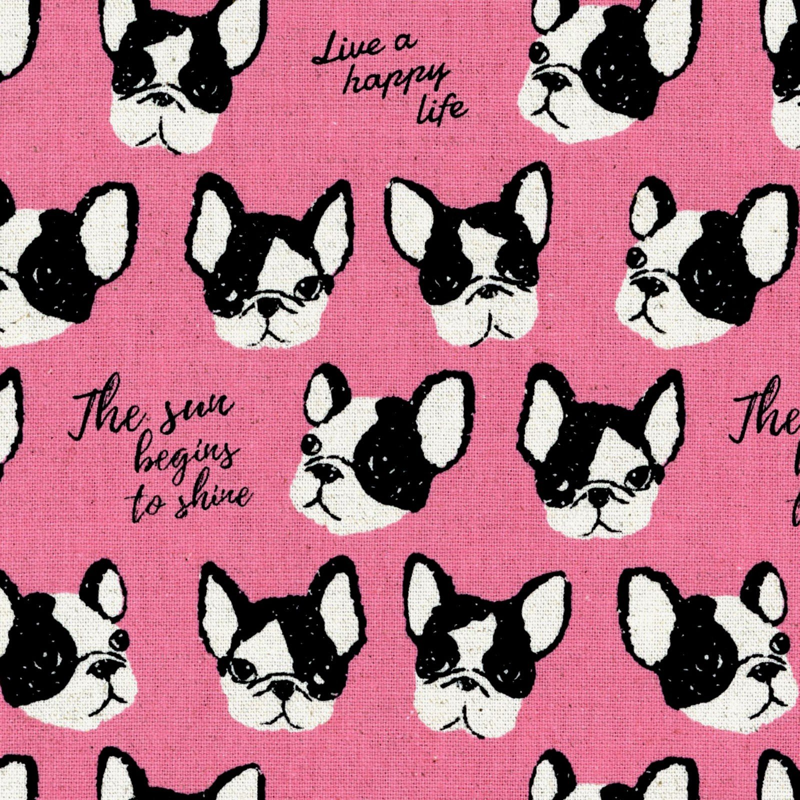 Boston Terriers on Pink Canvas