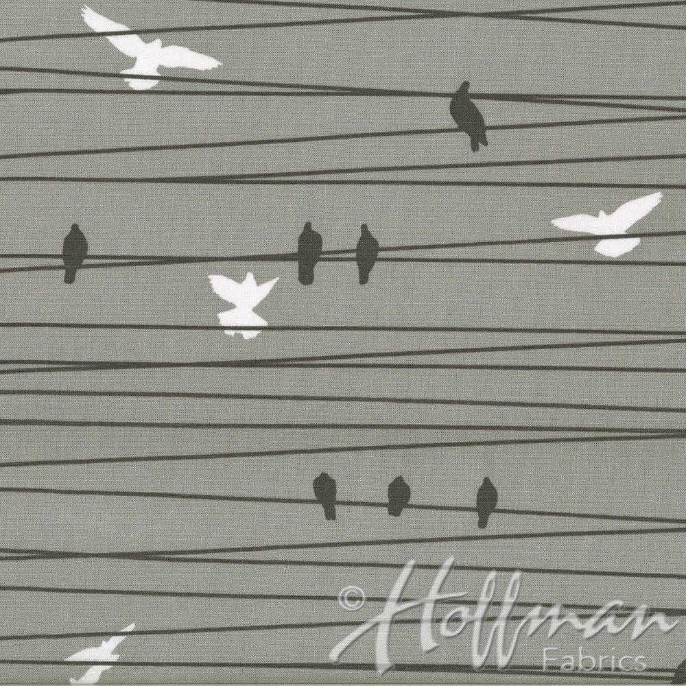 Grafic Birds on a Wire Stone