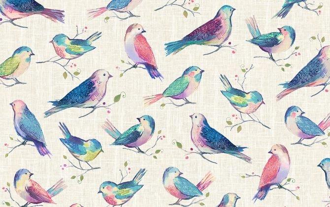 All A Twitter Birds Sweetpea