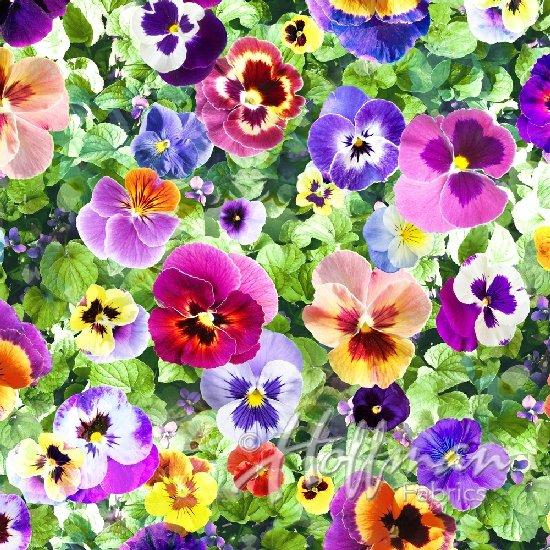 All Purpose Flower Digital Pansies