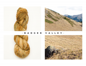14 Badger Valley