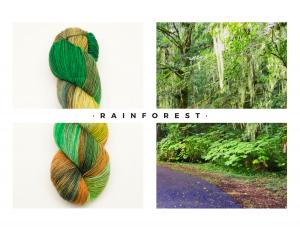 05 Rainforest