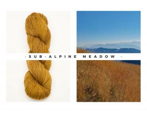 01 Sub Alpine Meadow