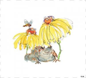Frog  Yellow daisy honeybee